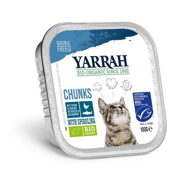 Katzen-Bröckchen Fisch in Sauce - AluCup, 100g
